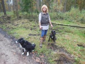 Wandelen met de honden